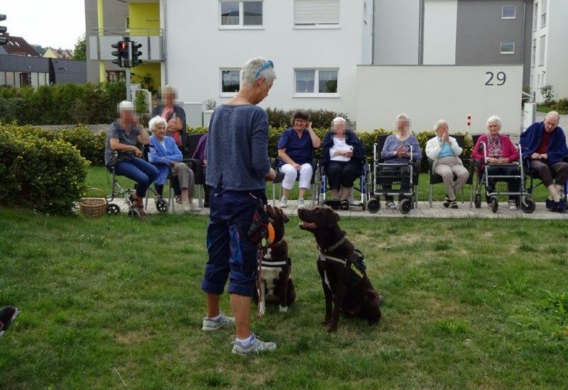 02.09.2019 Grillfest Und Hunde 005 überarbeitet